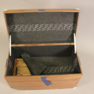 The Thorwald Trunk