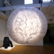 Miss Tutu, Randall Scott Gallery installation, 2008